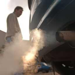 Carburantii ecologici si plantele protejeaza mediul