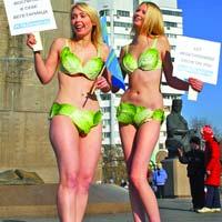 Protest PETA cu salata