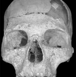 Homo sapiens din Banat iubea neanderthalienii
