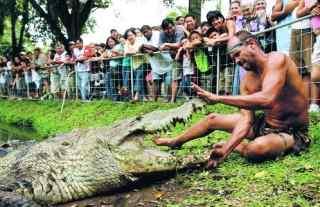 Crocodilul, cel mai bun prieten